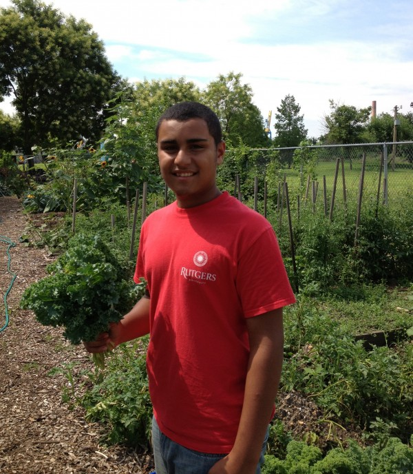 A COIN Scholar harvesting kale in a community garden at the Center for Environmental Transformation in Camden, NJ